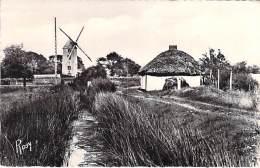 MOULIN A VENT (windmill Windmühle Windmollen ) En Vendée BOURRINE ( Molen Mulino A Vento Molino De Viento ) CPSM PF - Windmills