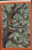 CPA FANTAISIES HUMOURISTIQUES  HUMOUR  -L'arbre Les Nids  Des  Bébés   AV 2016 1145 - Bébés