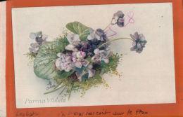 CPA  Fantaisies FLEURS Parma Violets  Signé Oilette   Par RAPHAEL TUCK & Sons  Favotite Flowers AV 2016 1197 - Tuck, Raphael