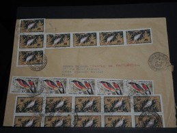NIGER - Enveloppe Pour La France En 1969 - Affranchissement Oiseaux En Multiple - A Voir - L8 - Niger (1960-...)