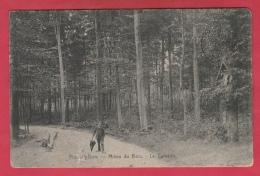 Flobecq-Bois - Milieu Du Bois - Le Calvaire ( Voir Verso ) - Flobecq - Vloesberg