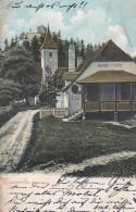 N.O.137   --  KLAMM AM SEMMERING  --  GASTHOF  RUINE --  1903 - Non Classificati