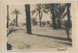 Carte Photo Oasis De Touat Hoggar  Sahara - Otros