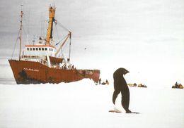 "Antarctic Research Vessel Mv. ""Polarbjorn"" In Antarctica - Barche"