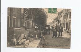 SAINT PALAIS (BASSES PYRENEES) RUE THIERS LE JOUR DE MARCHE (MARCHAND DE COCHONS) 1913 - Saint Palais