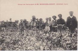 30 GENERAC - Groupe Des Vendangeurs De M. BOISSIER-GUIOT - Publicité Sur Le Dos De La Carte - France
