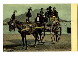 17258   -   Sicilia  -  Carro Siciliano - Postkaarten