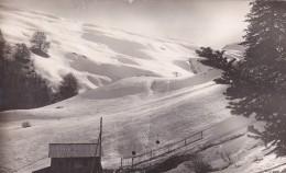 05. CEUZE. CHALET REFUGE DE MIANE . BELLE CARTE 1950. REMONTE PENTE - France