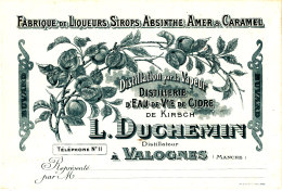 BU 1434 /   BUVARD -  FABRIQUE DE LIQUEURS SIROPS ABSINTHE  L. DUCHEMIN  A VALOGNES - Licores & Cervezas
