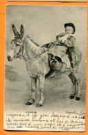 CAL943, Petit Cavalier Sur Son âne, Précurseur, Circulée  1910 - Ezels