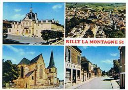 RILLY LA MONTAGNE  MULTIVUES   ****   A   SAISIR **** - Rilly-la-Montagne