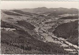 68  Vallee De Munster Vue De L Altenberg - Munster