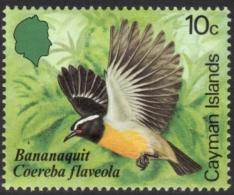 Bananaquit Passerine Stamp Mnh - Songbirds & Tree Dwellers