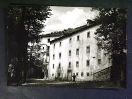 TOSCANA -PISTOIA -TREPPIO -F.G. LOTTO N°544 - Pistoia