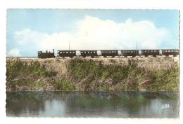34 Le Petit Train Palavas Montpellier (Alb5p23) - Palavas Les Flots