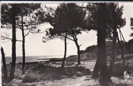 29----BEG MEIL---le Bois De Pins De Ker-myl---voir 2 Scans - Beg Meil