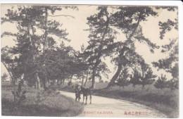 CPA JAPON AWADZU GA HARA - Japan