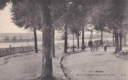 26q - 41 - Blois - Loir-et-Cher - Boulevard Daniel Dupuis Et La Loire - N° 101 - Blois