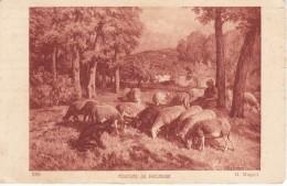 POSTAL DE UNA PASTORA CON LAS OVEJAS PASTORANDO  (OVEJA-SHEEP) GANADERIA - Animales