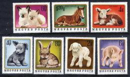 HUNGARY 1974 Young Animals Set MNH / **.  Michel 3007-13 - Hungary