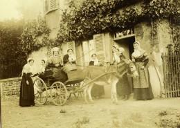 Vie Quotidienne En France Charrette Ane Groupe Ancienne Photo Amateur 1899