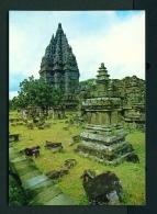 INDONESIA  -  Yogyakarta  Prambanan Hindu Temple  Unused Postcard - Indonesia