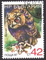 Owl Stamp - Owls