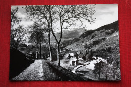 1959 MIELI DI COMEGLIANS CARNIA - Italia