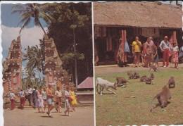 ASIE----INDONESIE-- Sangeh,hutan Kera.bali--voir 2 Scans - Indonésie
