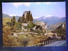 TOSCANA -MASSA CARRARA -FIVIZZANO -F.G. LOTTO N°546 - Massa