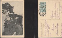 6104) SCORCIO DI LAGO E FRASE DI S. FERRARI VIAGGIATA 1917 - Italie