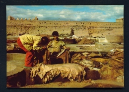 MOROCCO  -  Marrakesh  Tanners  Unused Postcard - Marrakech