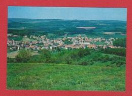 Theley  -- Gesamtansicht - Kreis Sankt Wendel