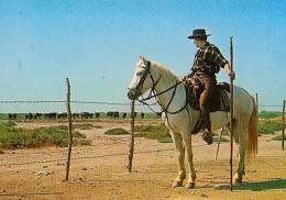 METIER       H103       Gardian Et Sa Manade De Toros - Allevamenti