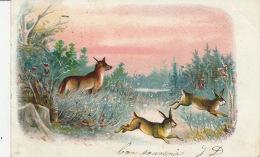 LAPINS - RABBIT - RENARD - FOX - Jolie Carte Fantaisie Renard Et Lapins Dans La Forêt - Animaux & Faune