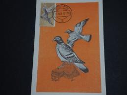 ESPAGNE / IFNI - Carte Maximum Pigeons 1957 - A Voir - L 157 - Ifni