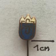 Badge (Pin) ZN002049 - Ferijalni Savez Jugoslavije (Yugoslavian Youth Hostel Association) - Alpinism, Mountaineering