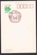 Japan Scenic Postmark, Monorail (js2259) - Japan