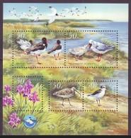 UKRAINE 2002. BLACK SEA BIOSPHERE RESERVE. BIRDS. SEAGULLS. Mi-Nr. 515-19 Block 37. MNH (**) - Meeuwen