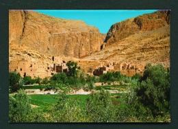 MOROCCO  -  Todra Valley  Unused Postcard - Marrakesh