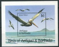 """ANTIGUA & BARBUDA 1990** - Birds """"Brown Pellican / Pellicano Bruno"""" - Block MNH Come Da Scansione - Pellicani"""