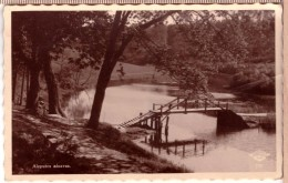 Aizpute.Jewish Bridge Over River Tebra.Zidu Tilts Par Tebras Upi.Latvia.Fotobrom - Latvia