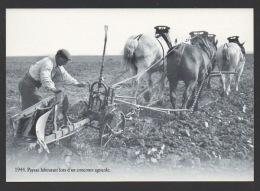 DD / AGRICULURE / ATTELAGE / PAYSAN LABOURANT LORS D'UN CONCOURS AGRICOLE EN 1944 - Spannen