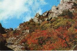 Korea, North - Nae ( Inner ) - Kumgang In Autumn - Corée Du Nord