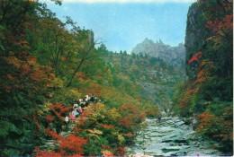 Korea, North - Path To Manmulsang - Korea, North