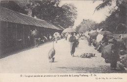 Asie - Laos -  Marché De Luang Prabang - Grue - Laos