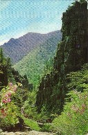 Korea, North - Chilchung - Am ( Seven - Storied Rock ) - Korea, North