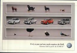 390  V W  GOLF  VIERGE VERSO - Voitures De Tourisme