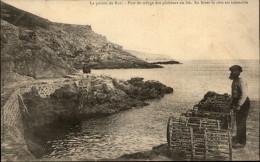 29 - POINTE DU RAZ - Reguge Des Pecheurs - France