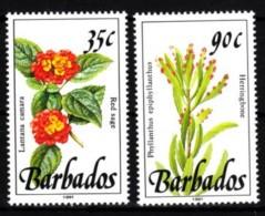 Barbados  1992 MiNr. 797/ 798  **/ Mnh   Pflanzen - Pflanzen Und Botanik